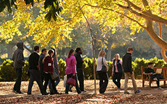 Undergraduate Admission tour of campus in the fall
