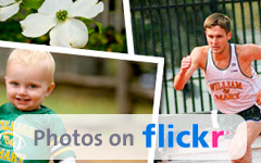flickr widget
