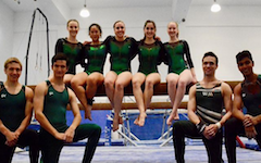 The club gymnastics team pose in front of and on the balance beam.