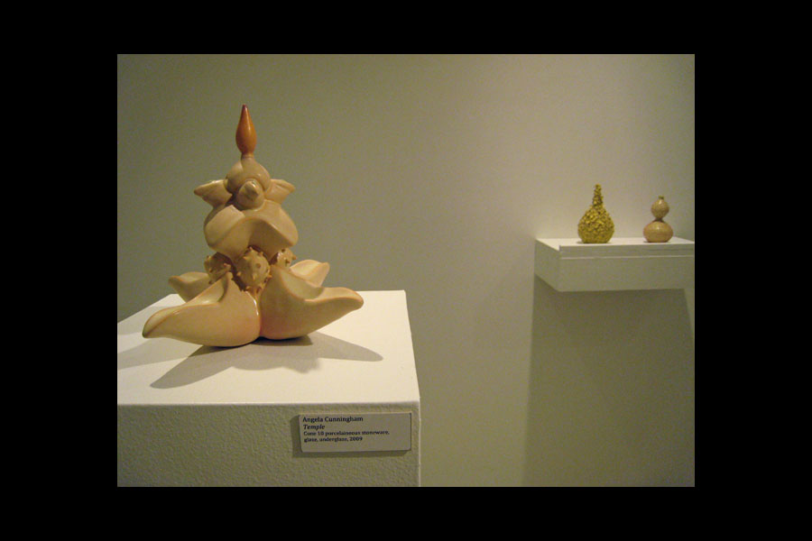 Angela Cunningham: Temple (foreground), Bloom, Nettle; cone 10 porcelaineous stoneware, glaze, underglaze, 2009