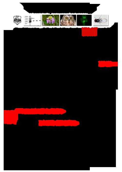 Fall 2012 Seminar Schedule