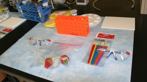 Lab bench prepped for Open Lab