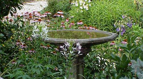 Lovely Birdbath