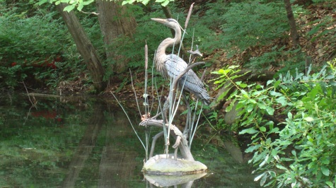 Great Blue Heron with Marsh Wren and Turtle