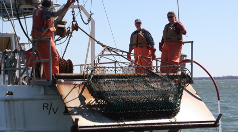 VIMS Dredge Survey team: