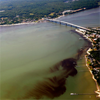 VIMS collaborates with federal partners to study algal blooms