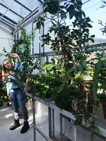 Elli Cryan '18 leads a tour of the ISC Greenhouse. (Photo by Kristen Popham '20)