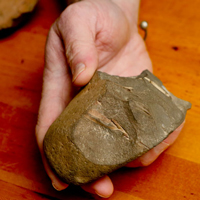 Our hominid ancestors made and used tools. We'll show you a few.