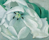 """White Flower"" by Georgia O'Keeffe (Photo courtesy of Muscarelle Museum of Art)"