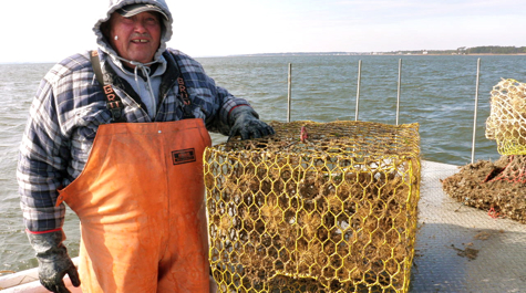 A waterman stands next to a crab pot on a boat