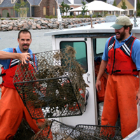 A researcher handles a derelict crab pot on a boat in the York River