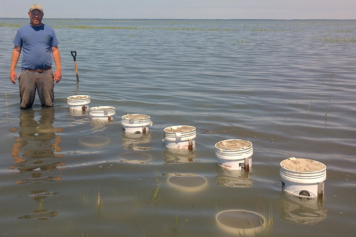 Matt Kirwan stands in knee-high water near a row of buckets
