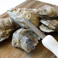 Consortium earns funding to enhance oyster breeding