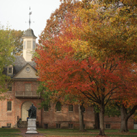 A tree with orange and yellow leaves stands in front of a portion of the Wren Building