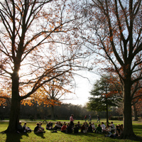 Seated students in an outdoor location on campus with tall trees in the foreground