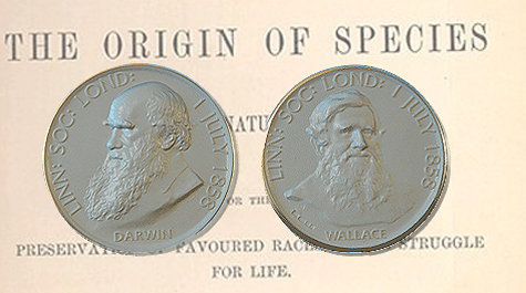 Two sides of the Darwin-Wallace Medal