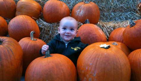 A little Tribe in the pumpkin patch