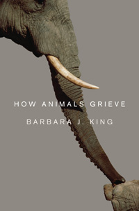 The cover of King's new book, ''How Animals Grieve''