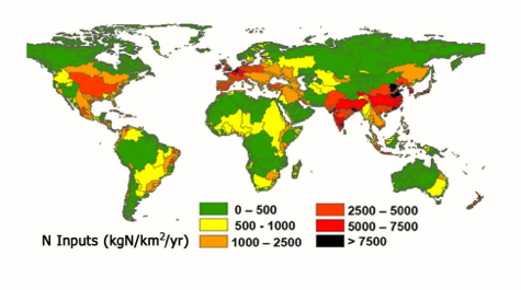 Global Nitrogen Inputs