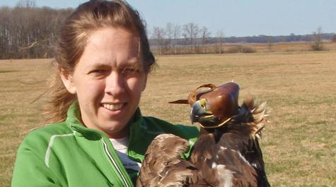 Cradling a golden eagle