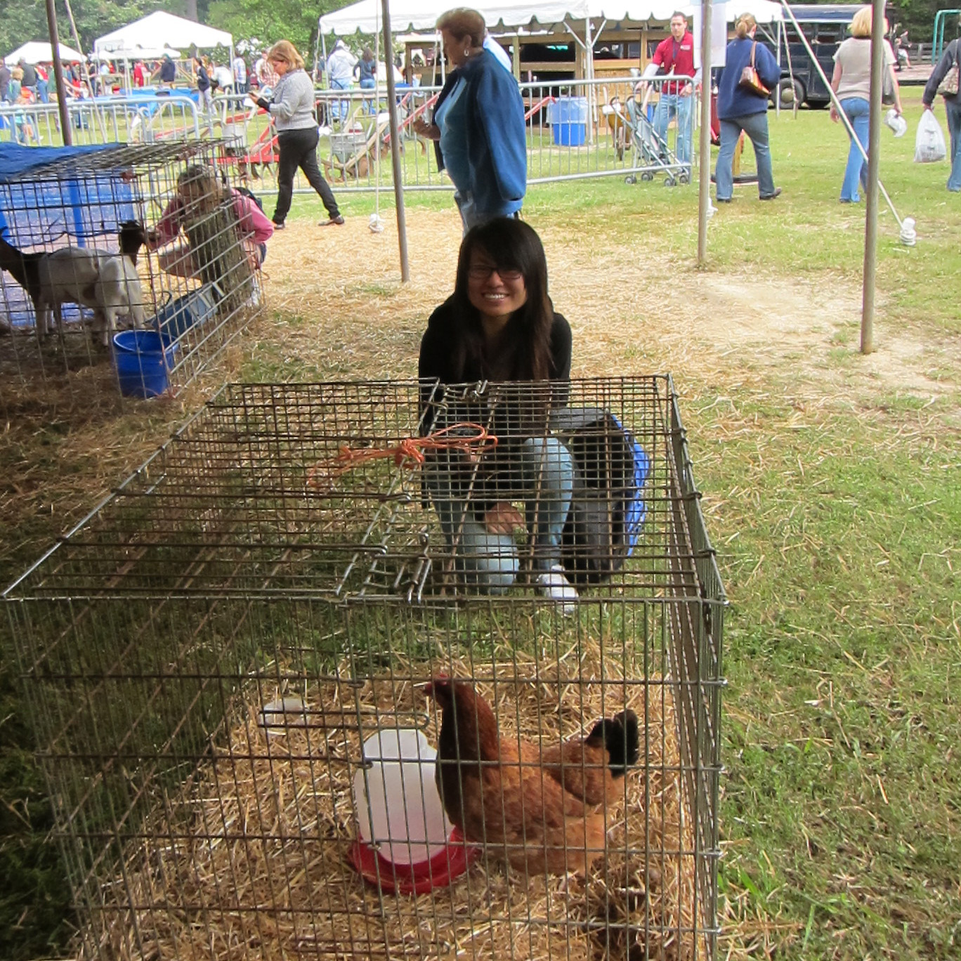 Seeing some chickens at the state fair
