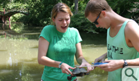Maren Hunsberger '15 tries to keep a grip on Number 13 as Andrew Koons '15 uses calipers to measure the turtle's carapace. Number 13 was the only turtle caught on Sept. 4 in Crim Dell.