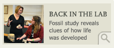 Back in the lab: Fossil study reveals clues of how life was developed